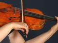 Die Viola