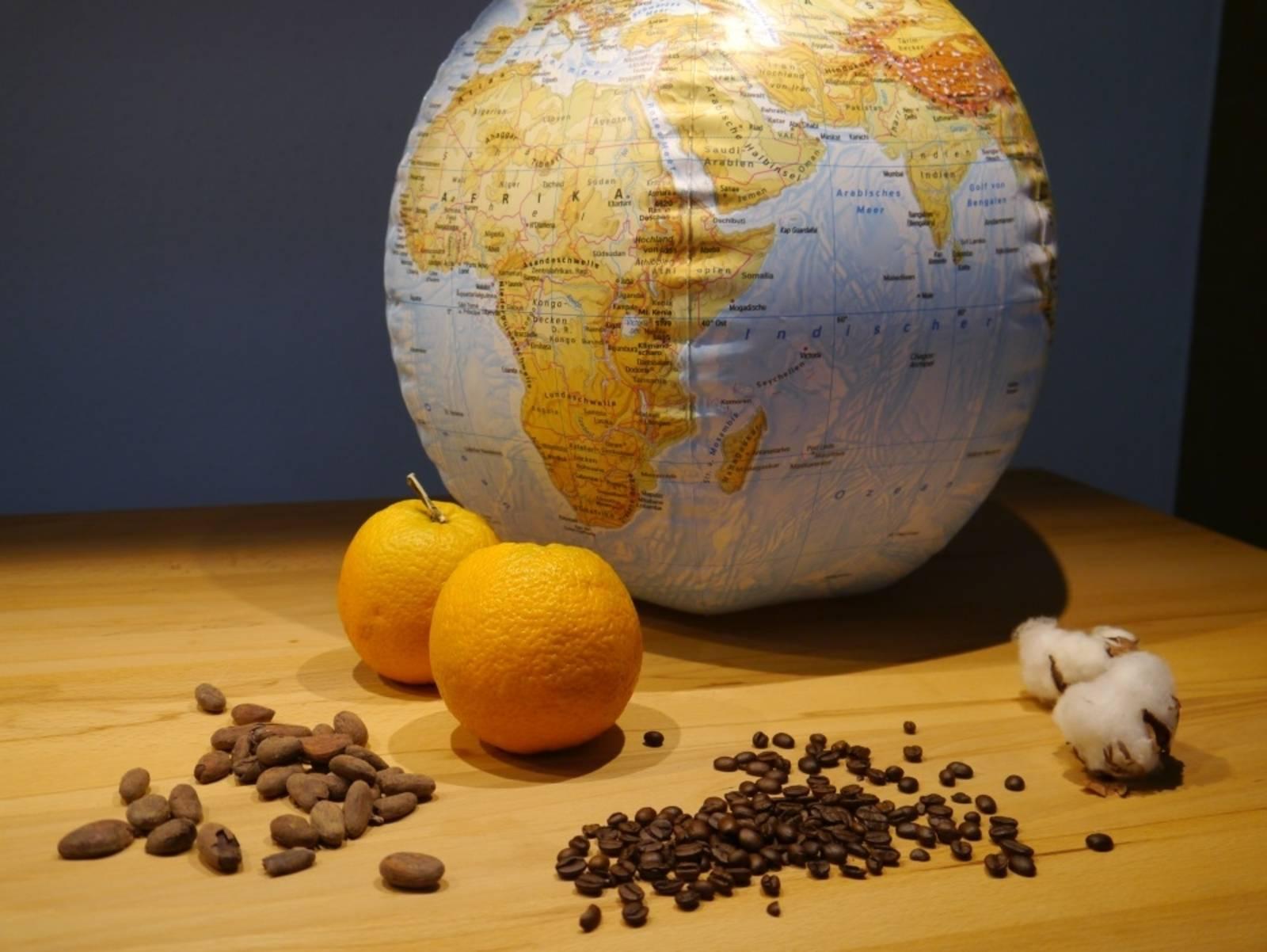 Ein Globus. Davor eine Orange, Baumwolle, Kaffeebohnen und Kakaobohnen.
