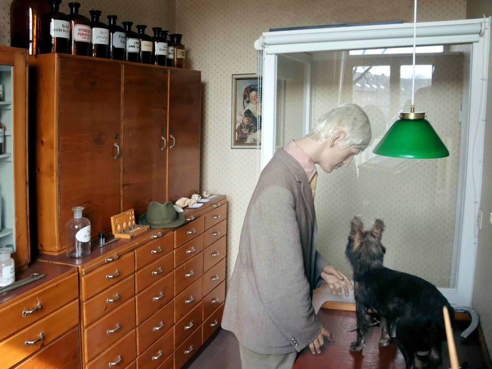 Eine als Landtierarzt verkleidete Puppe mit einem Hund.