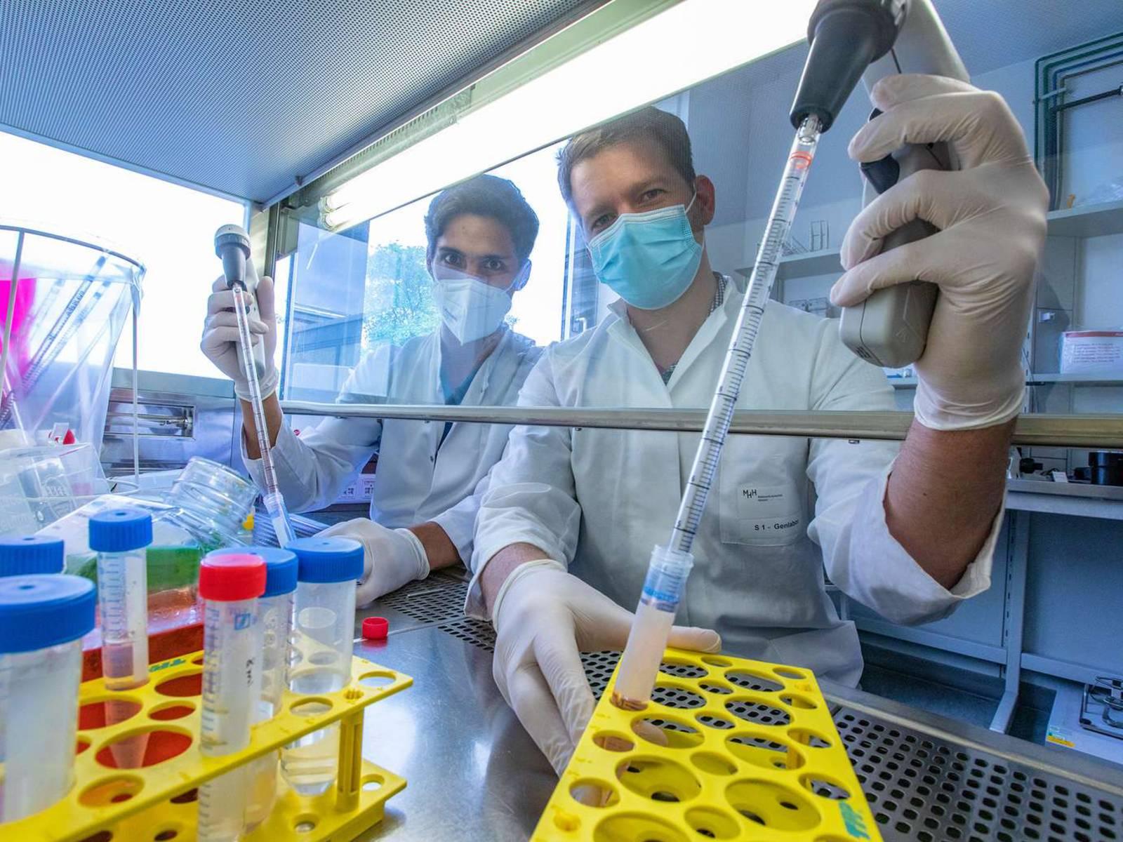 Dr. Simon Krooss (links) und Dr. Patrick Behrendt beim Pipettieren an einer sterilen Werkbank in einem Zellkultur-Labor der MHH.