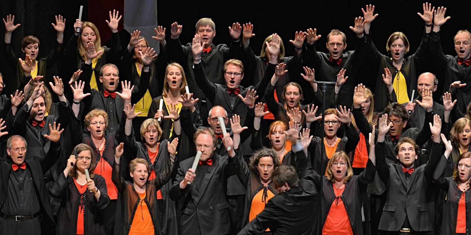 Gruppenfoto: Der Chormitglieder haben sich nach hinten aufsteigend in mehreren Reihen aufgestellt.