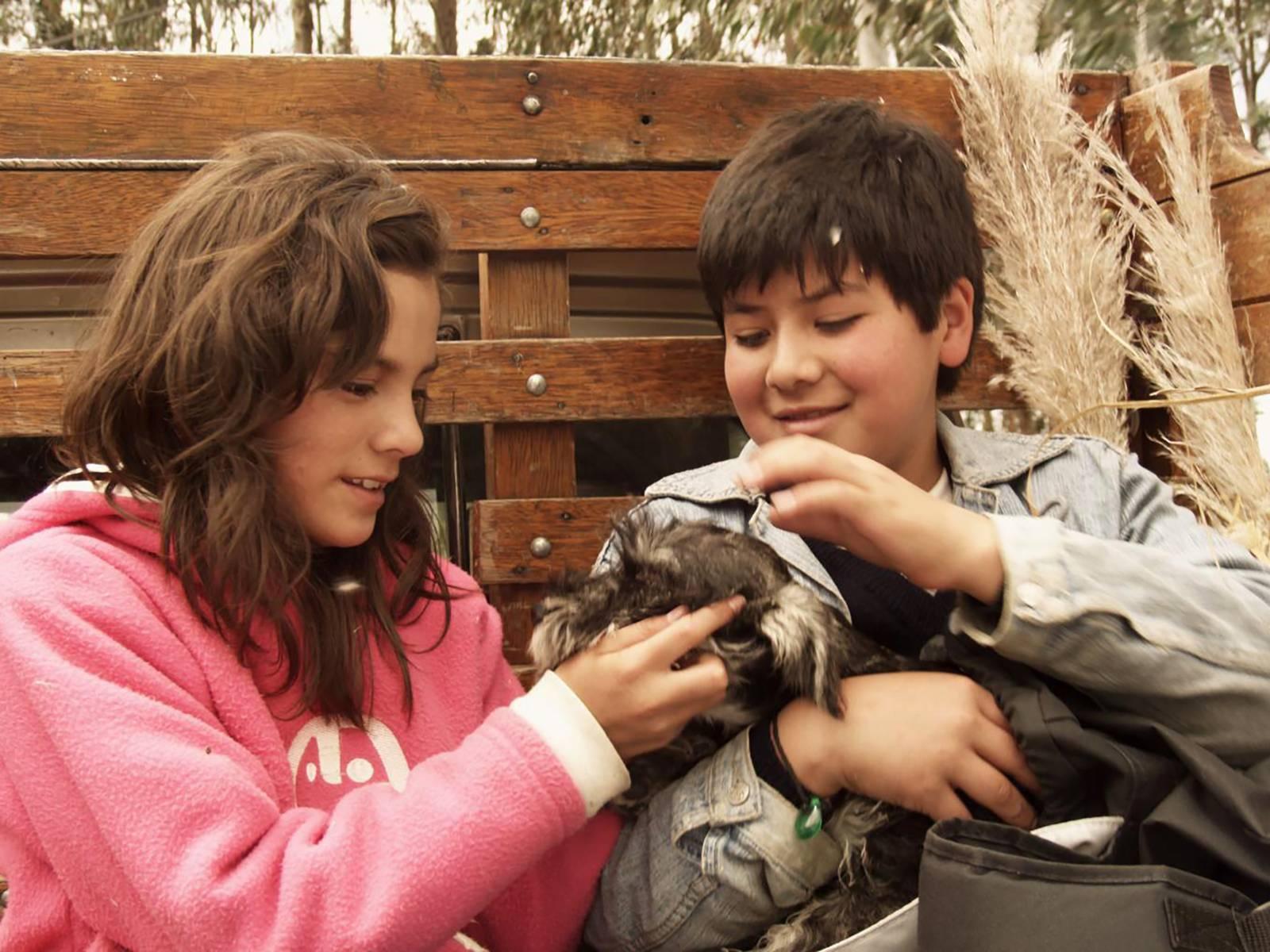Ein Mädchen und ein Junge - beide zirka 10 Jahre alt - sitzen nebeneinander. Der Junge hält einen Hund in den Armen. Beide kraulen das Tier.