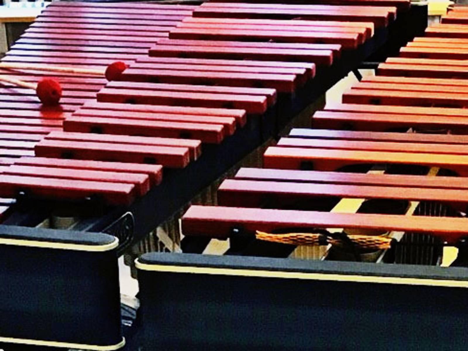 Die Marimba gehört zur Familie der Holz-Schlagstabspiele.