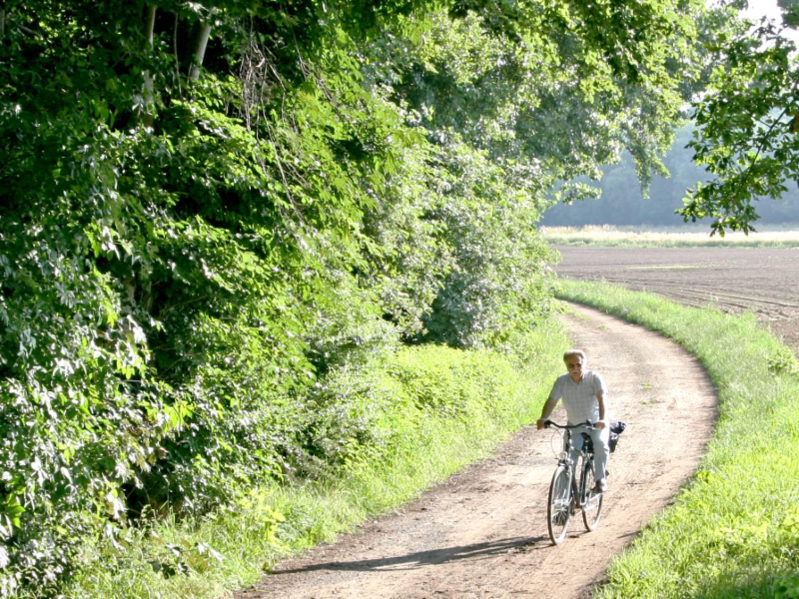 Ein Radfahrer fährt auf einem Feldweg. Im linken Teil des Bild ist Wald, hinten rechts ist ein Feld zu erkennen.