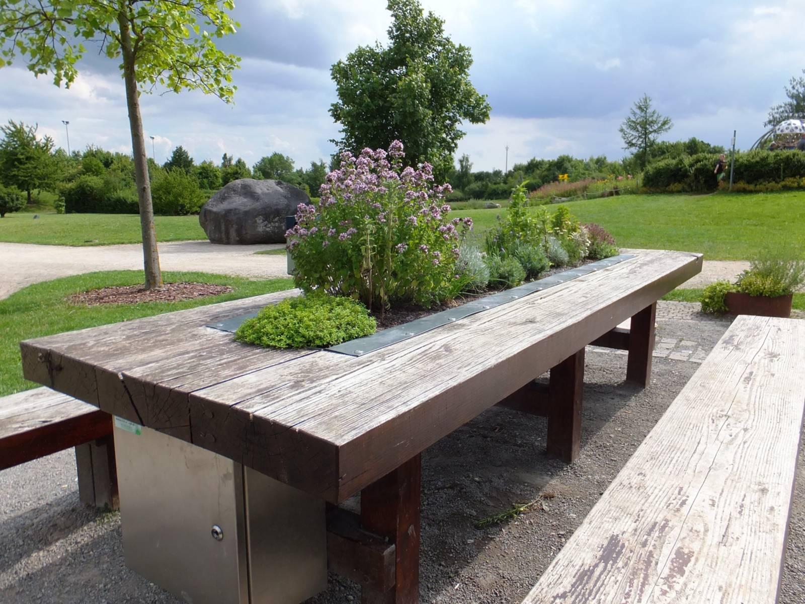 Länglicher Holztisch mit Pflanzen in der Tischmitte. Davor jeweils eine Holzbank.