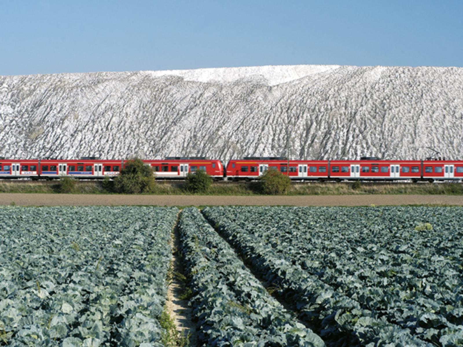 Felder, im Mittelgrund eine rote S-Bahn und im Hintergrund die Weiss leuchtende Kalihalde