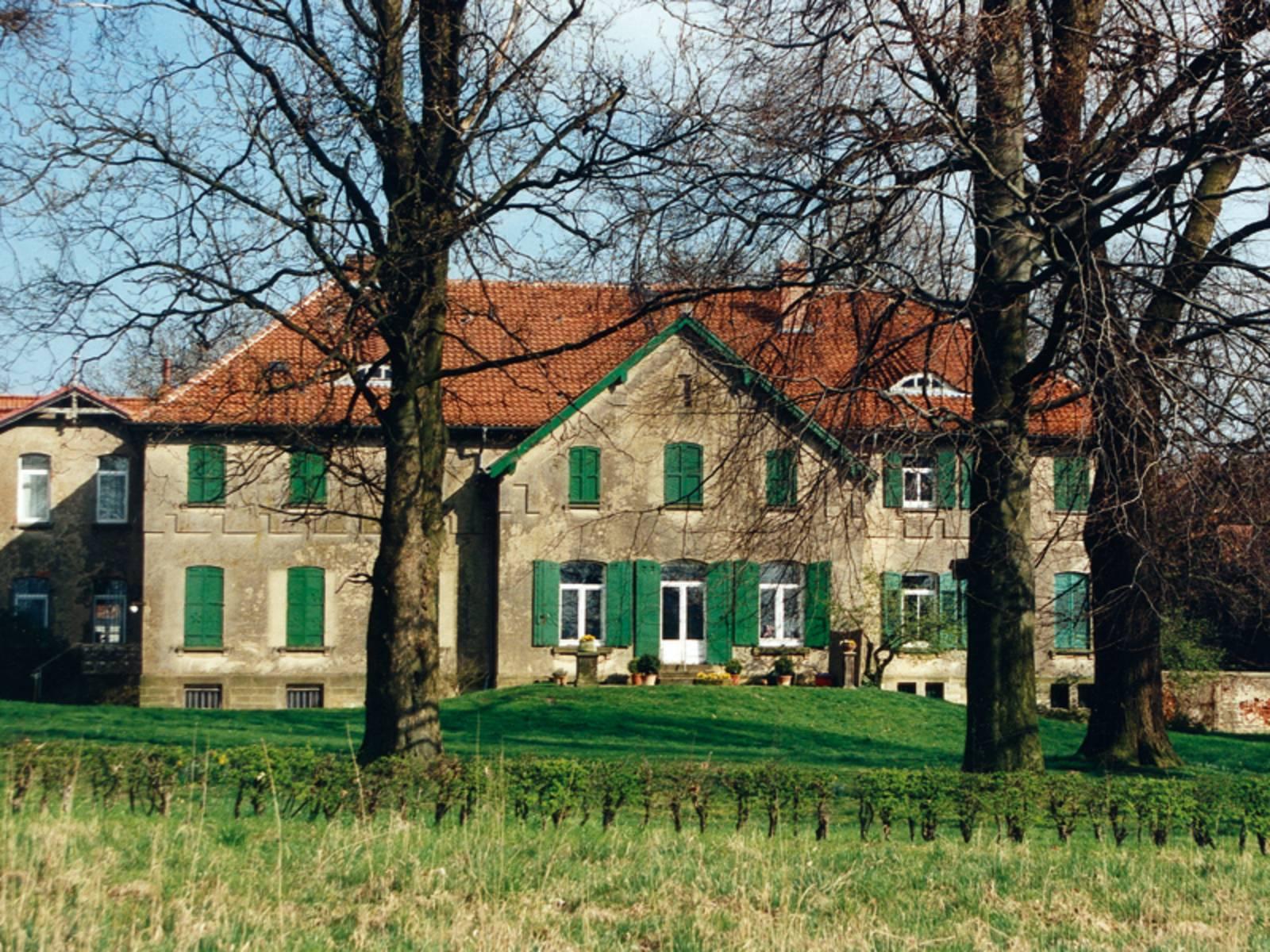 Gutshaus mit grünen Fensterläden, im Vordergrund Wiese, alte unbelaubte Bäume und ein kleiner Hügel, bei blauem Himmel und Sonnenschein