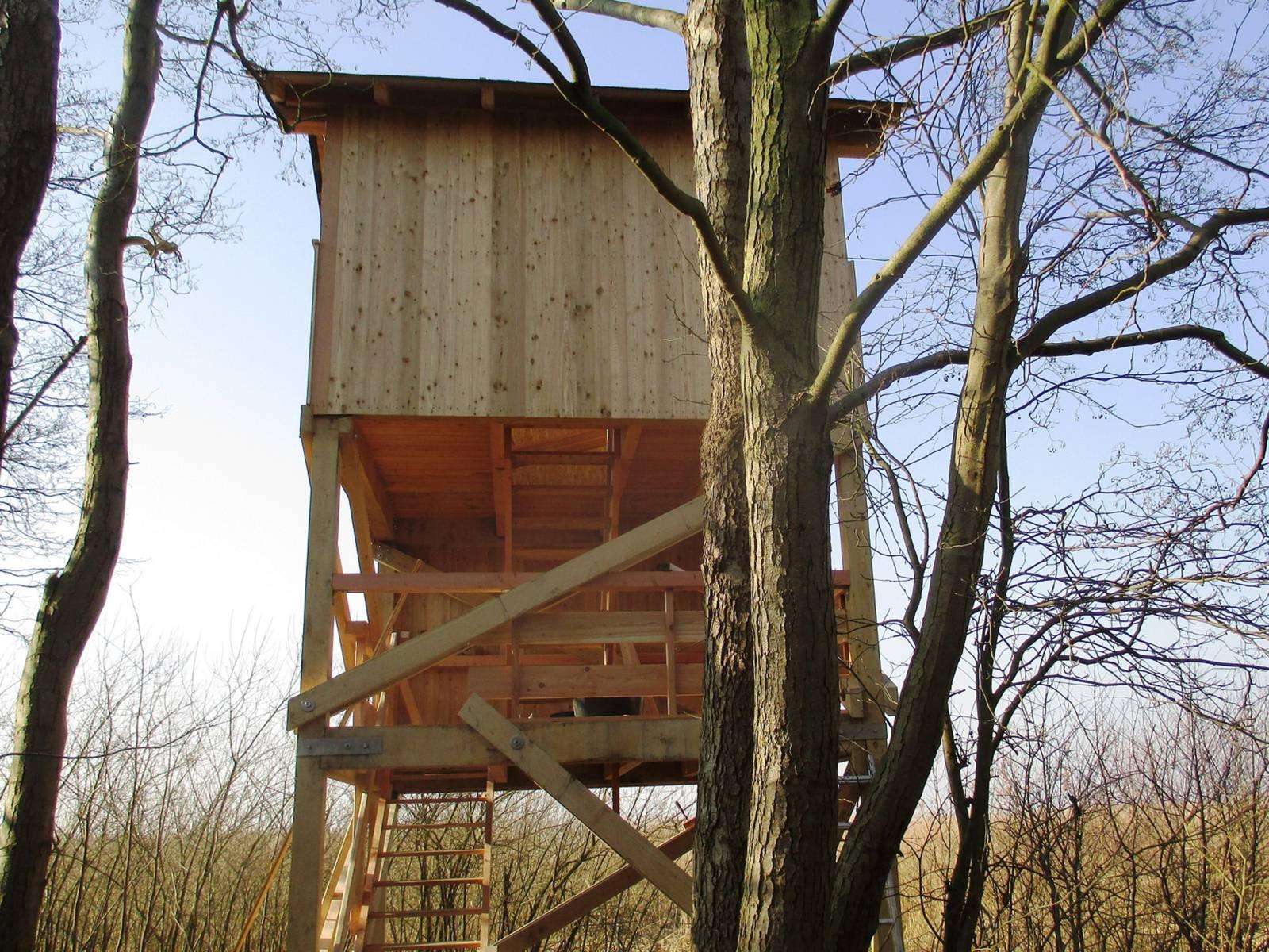Ein aus hellem Holz gebauter Hochstand zum Beoachten von Tieren