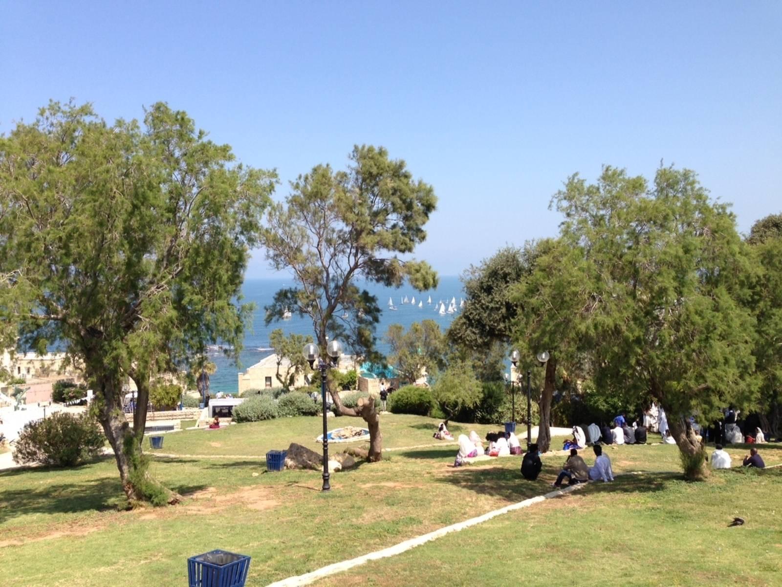 Menschen in einem Park von Tel Aviv