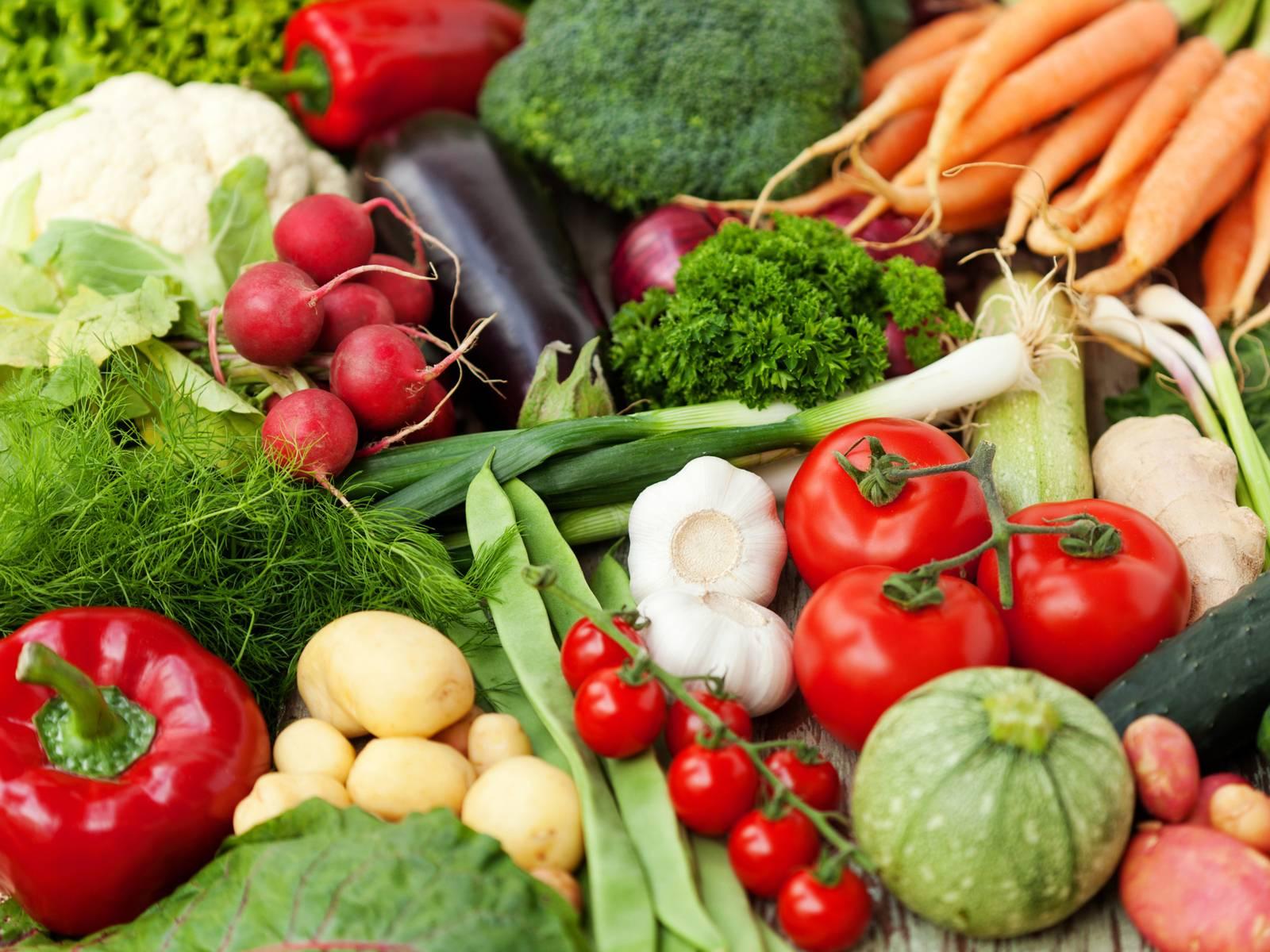 diverse Gemüsesorten, wie Lauchzwiebeln, Möhren, Tomaten, Gurken, Paprika, Fenchel