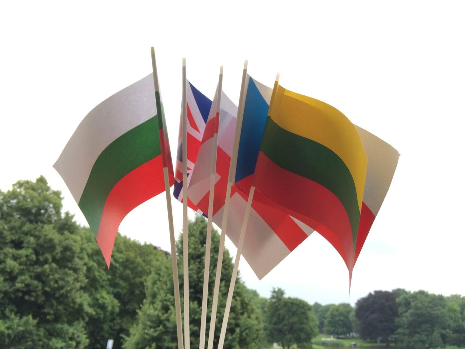 Das Bild zeigt verschiedene Länderflaggen.