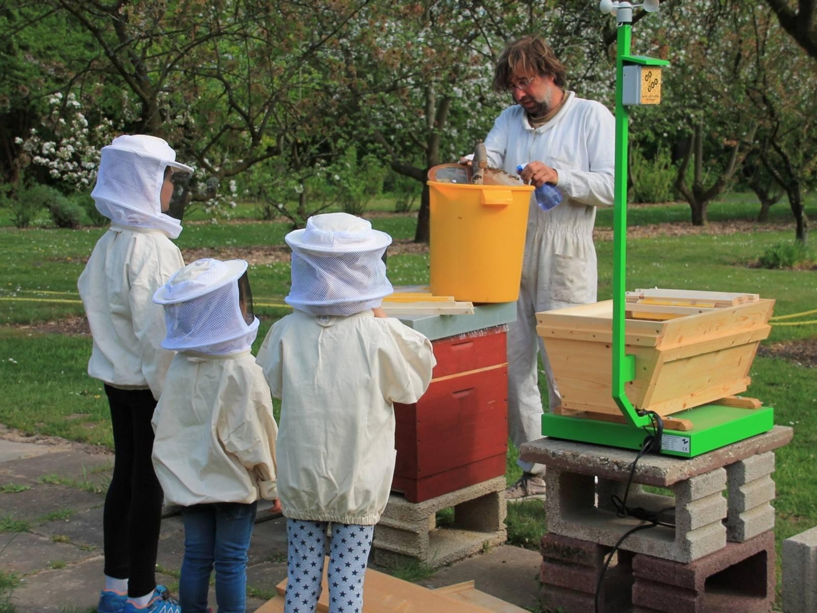 Drei Kinder mit Imkerhelm, die einen Mann an einem Bienenstock beobachten.