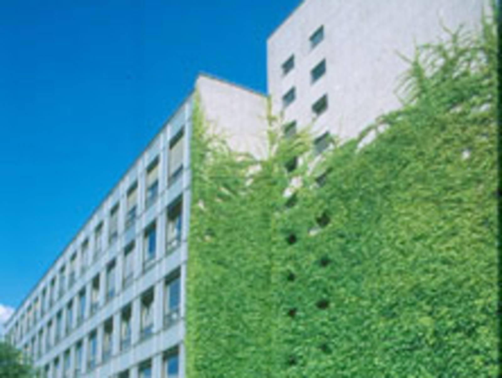 Mit Efeu bewachsenes Gebäude der Volkshochschule Hannover