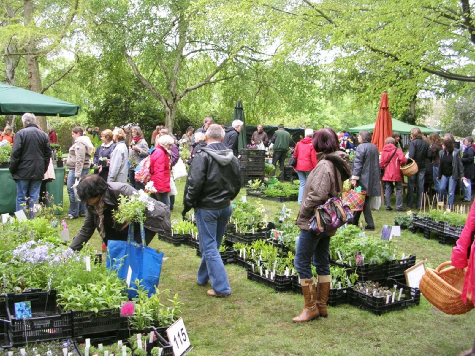 Besucher begutachten das Pflanzenangebot auf den Hannoverschen Pflanzentagen