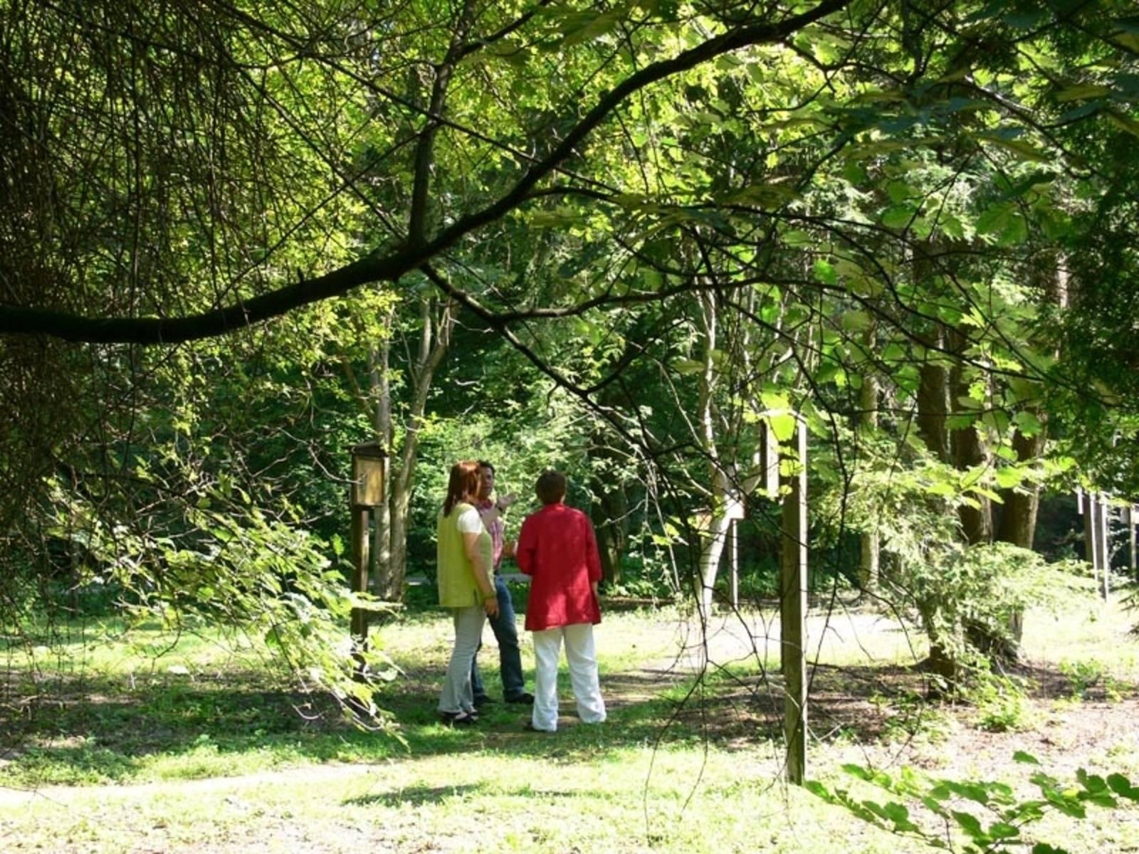 Der Waldlehrpfad im Mecklenheider Forst