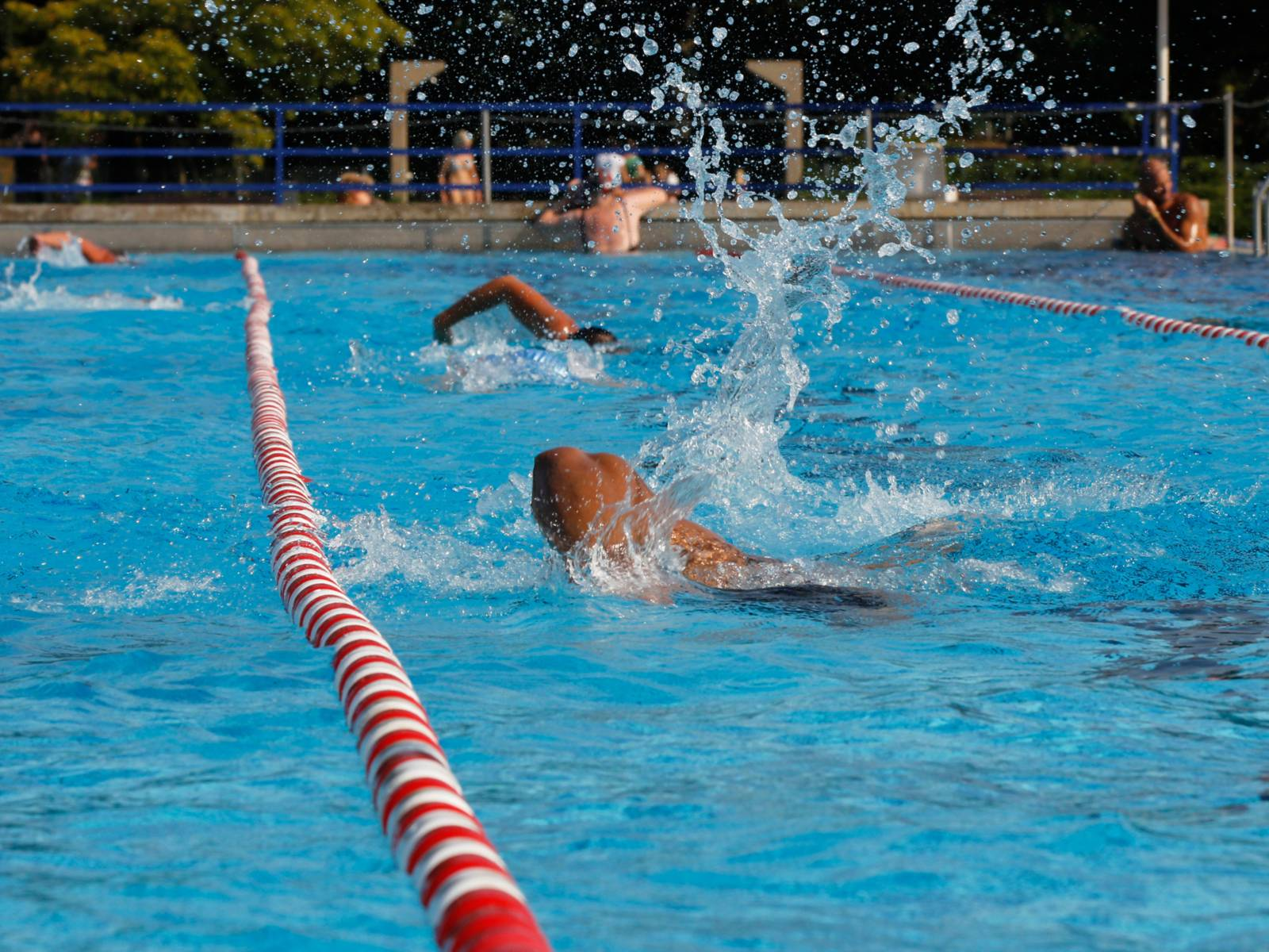 Schwimmende Menschen in einem Freibad.
