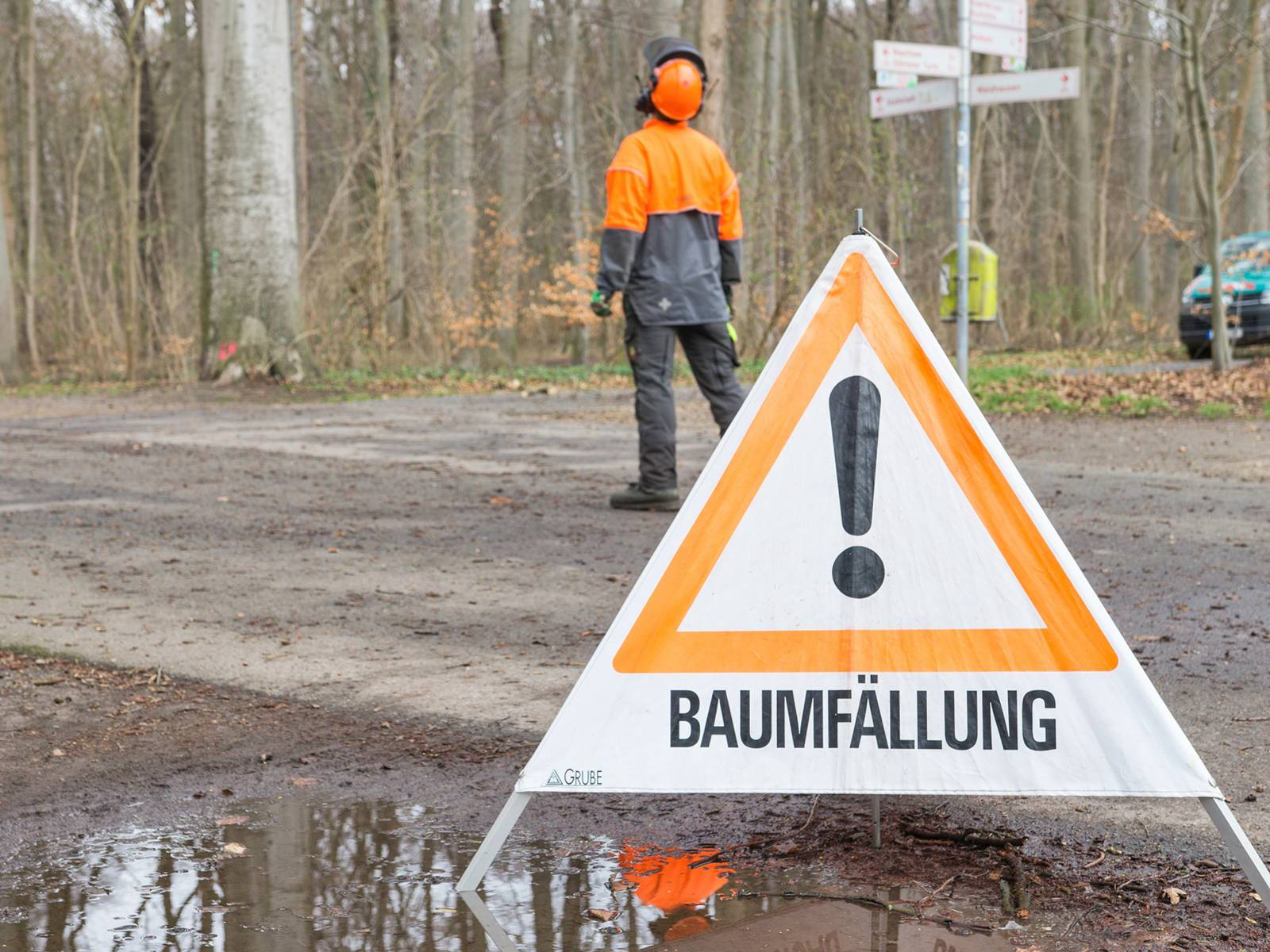 """Warnschild """"Baumfällung"""" im Vordergrund, daher ein Mann, der die Arbeiten beobachtet"""