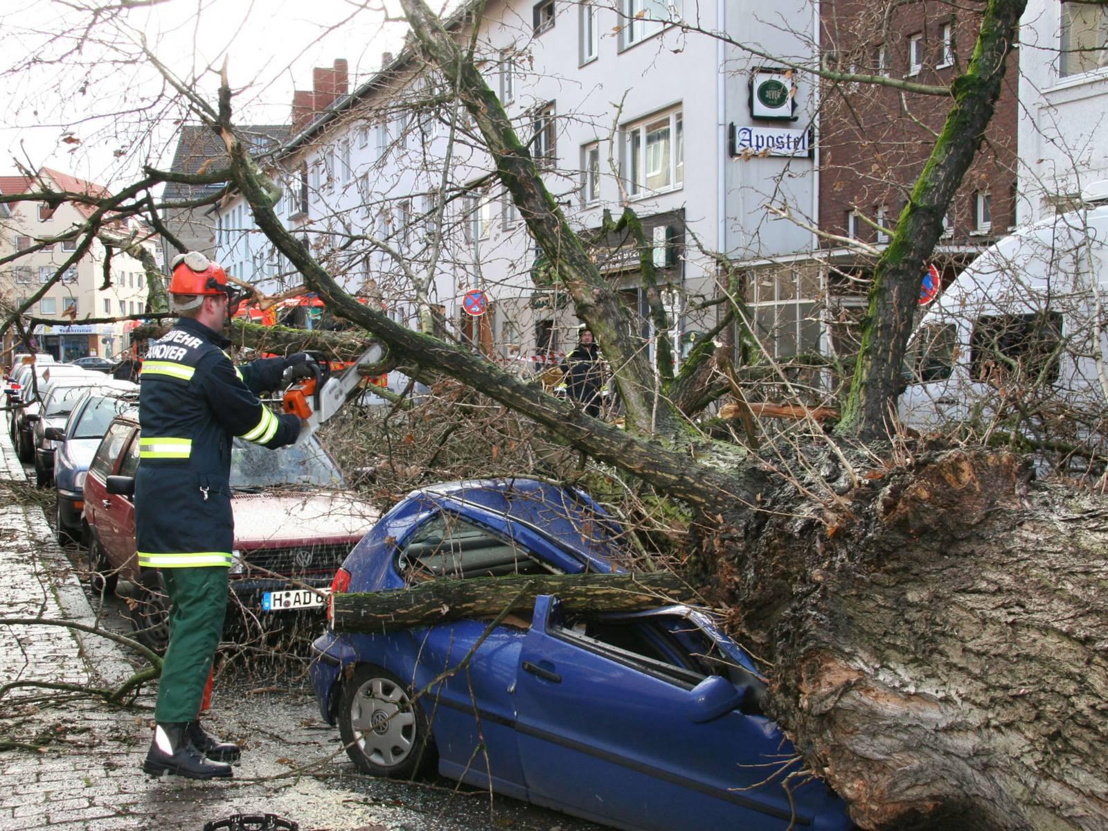 Ein Feuerwehrmann sägt einen Ast von einem Baum ab, der auf ein Auto gefallen ist