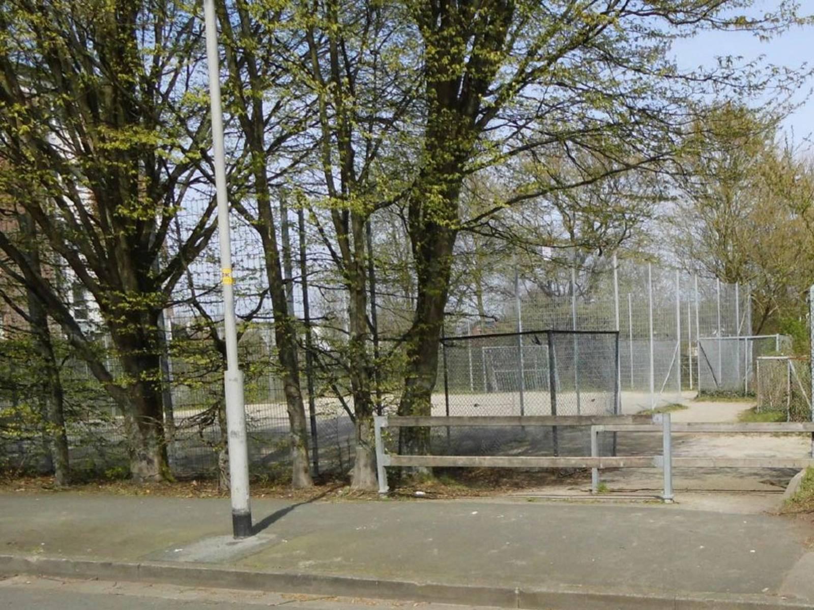 Ein umzäunter Bolzplatz umrandet von Bäumen