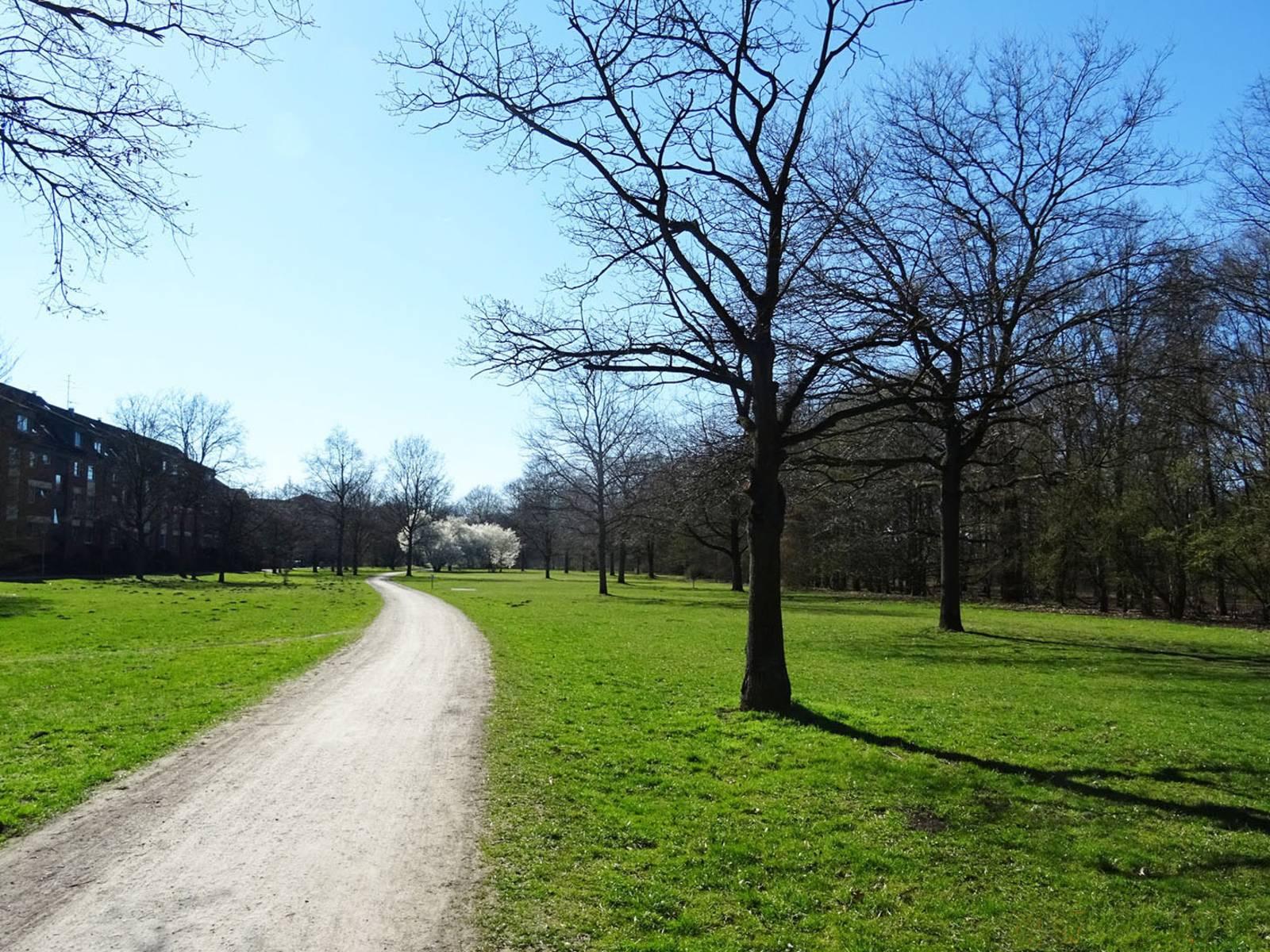 Eine Grünanlage, durch die ein Weg führt