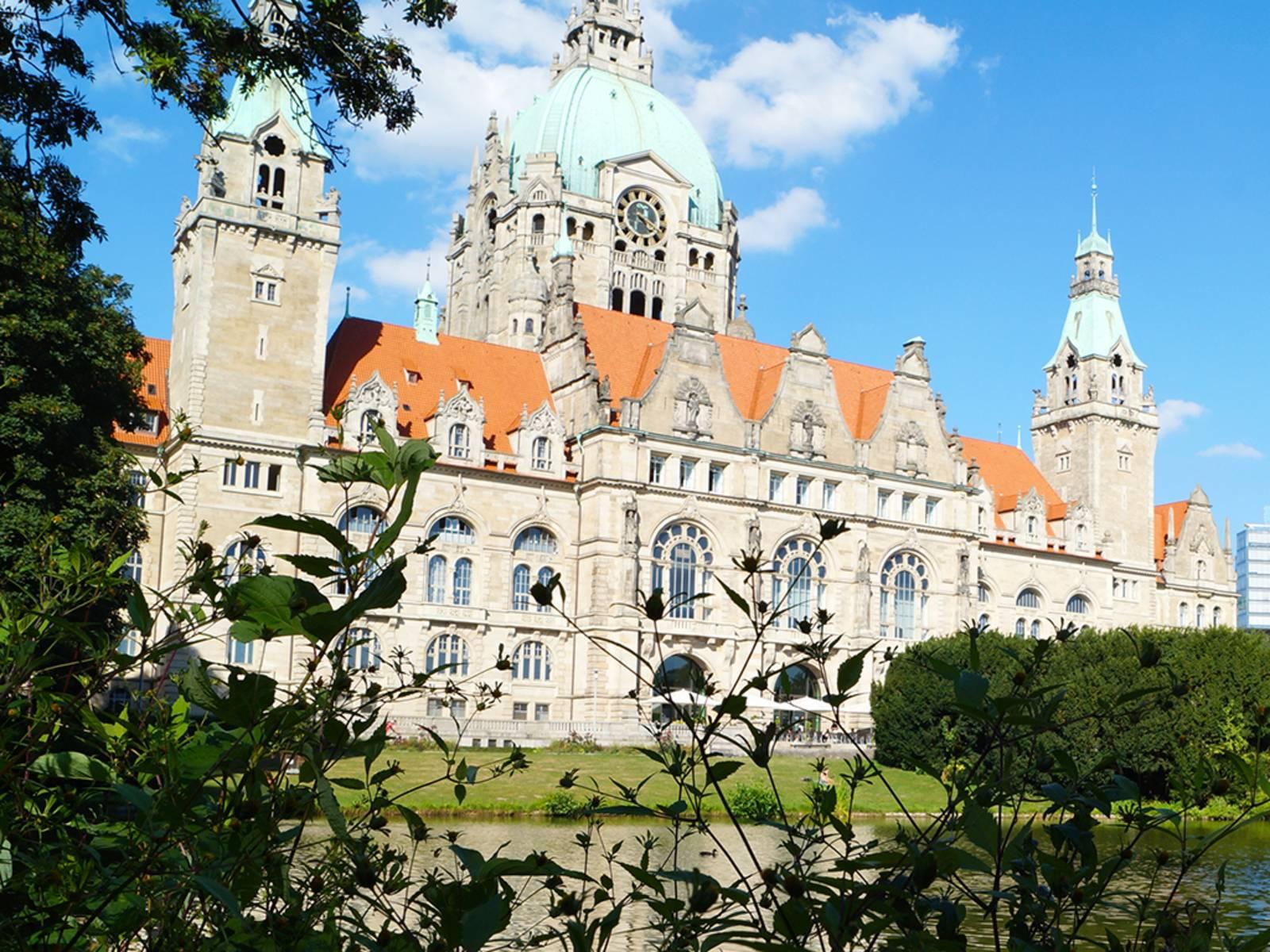 Blick auf das Neue Rathaus vom Maschteich aus, im Vordergrund Äste und Büsche