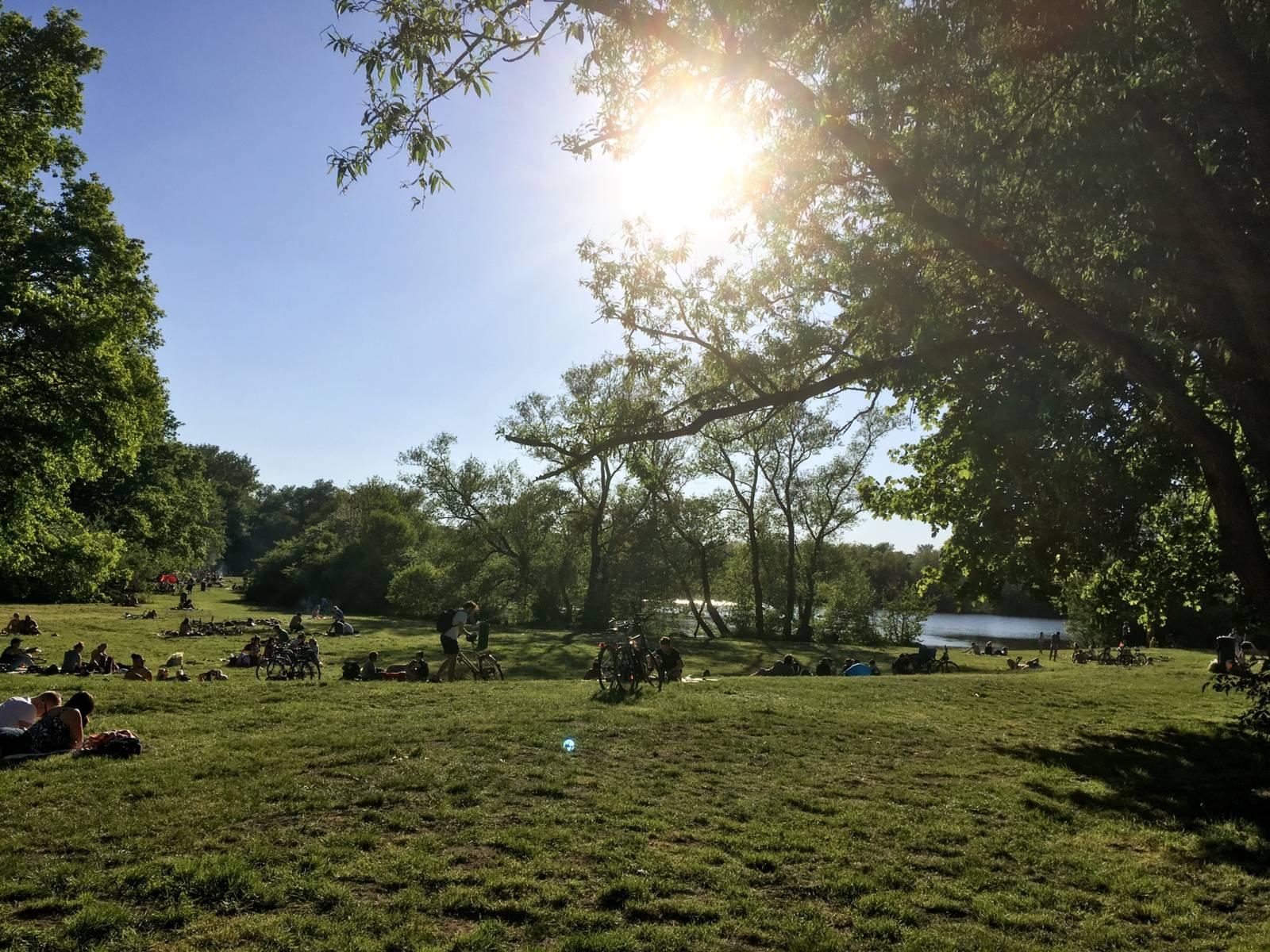Menschen liegen auf einer grünen Wiese an einem See.