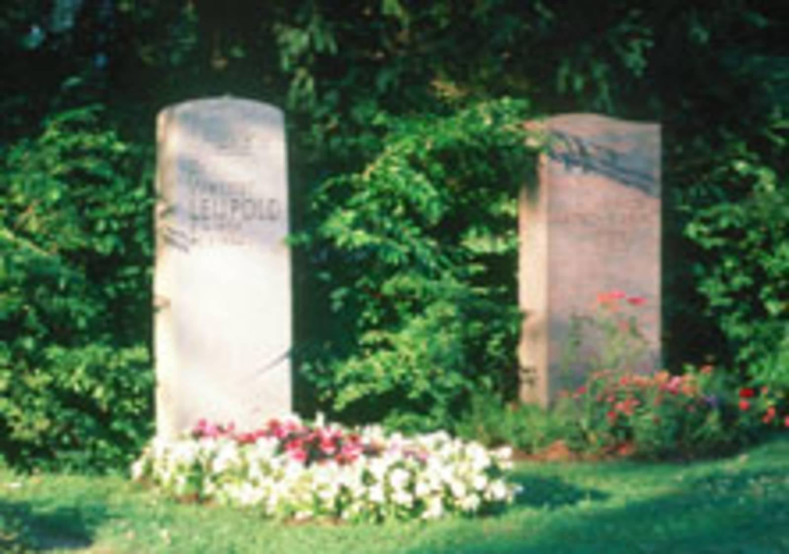 Gräber auf dem Seelhorster Friedhof