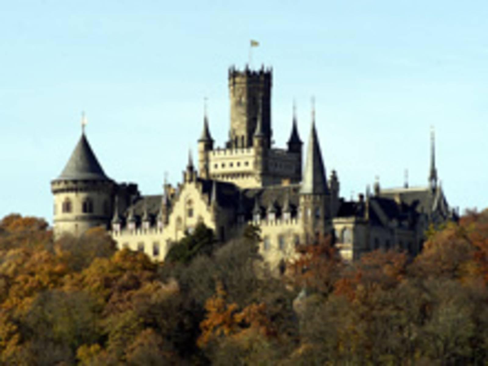 Mischwald im Herbst mit dahinter aufragender Burg.
