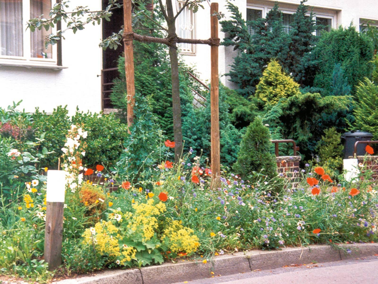 Ein mit Blumen und Bäumen bestückter Vorgarten