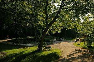 Weg im Willy-Spahn-Park
