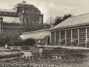 Blick auf das Große Palmenhaus