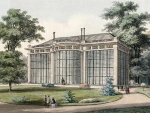 Palmenhaus von Laves