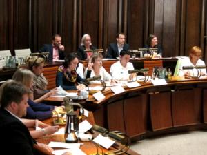 Elf Personen sitzen in zwei Reihen im Viertelkreis hinter Pulten. Eine davon signalisiert mit der Hand einen Redebeitrag.