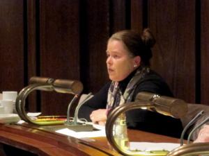 Bilder von der Sitzung des Internationalen Ausschusses am 2013-01-24