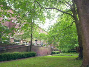Der Park am Pflegezentrum Heinemanhof