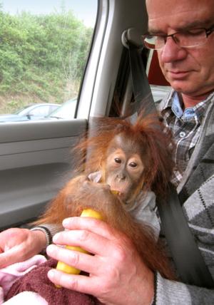 Mann mit kleinem Affen auf dem Schoß.