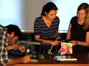 Drei junge Mensch arbeiten stehend an einem Tisch, auf dem unter anderem das Modell eines Schädels im Querschnitt aufgebaut ist.