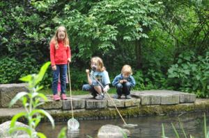 Drei Kinder keschern an einem Teich