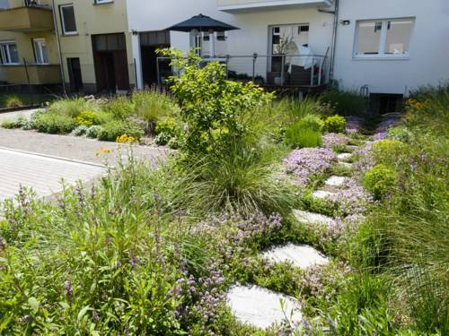Ein grüner Hinterhof, in dem es blüht.