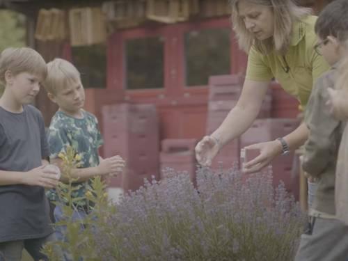 Screenshot eines Videos, das Kinder und eine Erwachsene an Blumen zeigt.