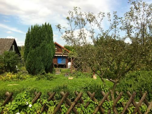 Ein Kleingarten in Hannover. Im Hintergrund steht eine Hütte, davor eine gepflegte Grünfläche.