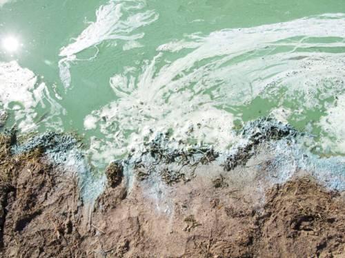 Sandiges Ufer, davor grünlich schimmerndes Wasser mit einem dünnen weissen Schaumfilm, der teilweise Blasen schlägt