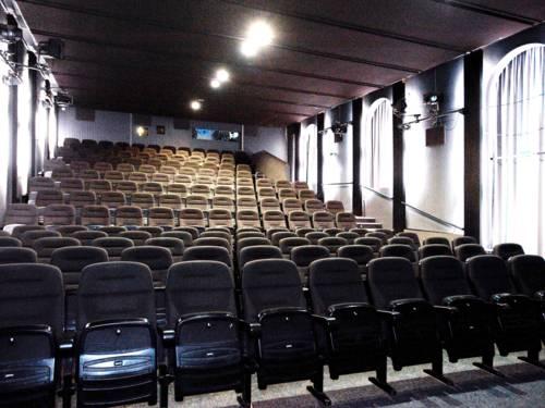 Ein Kinosaal mit 14 bestuhlten Reihen. Die Sitze sind klappbar.