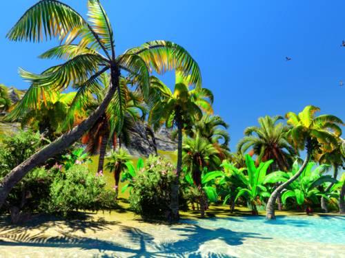 Sandstrand mit Palmen