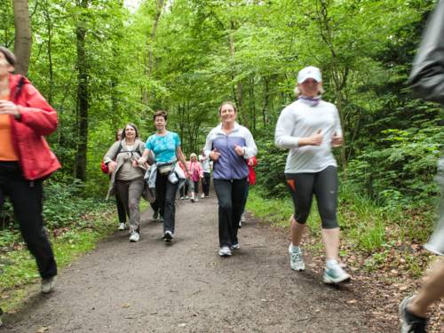 Mehrere Personen gehen sportlich über einen Waldweg.