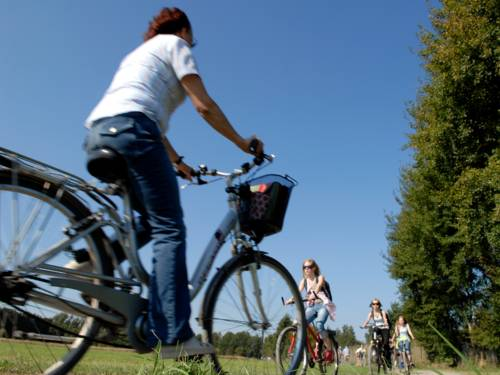 Eine Radfaherin fährt durch Felder und Wiesen, ihr kommen junge Radfahrerinnen entgegen.