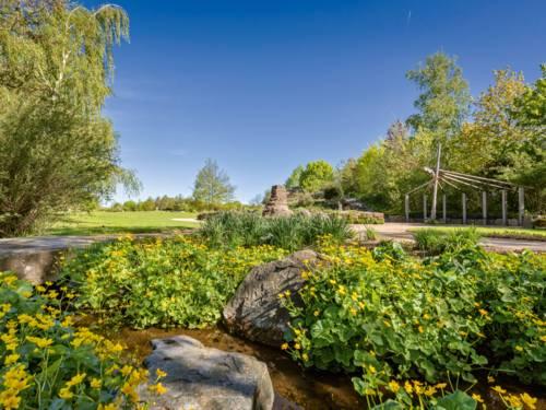 Wasser, Kunst, Blüten und viel Grün in einer Gartenlandschaft.