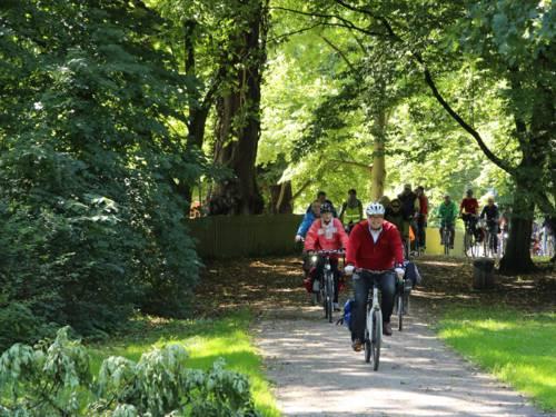 Ein Gruppe von Radfahrern fahren hintereinander auf einem Weg durch einen Wald. Ganz vorne radelt ein Mann, der einen roten Pullover und einen Fahrradhelm trägt.