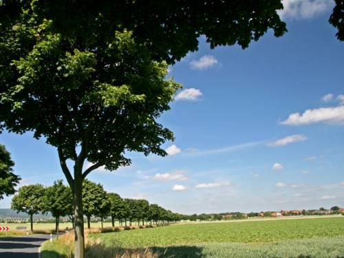 Bäume stehen neben der Fahrbahn und bilde eine Allee. Die Landschaft besteht ansonsten aus Feldern, weit entfernt zeichnen sich Wohnhäuser vor strahlend blauem Himmel ab.