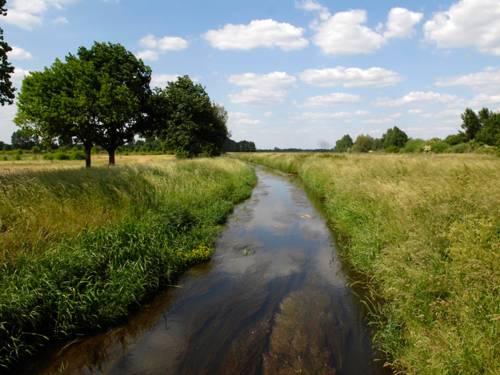 Ein kleinerer Fluss eingebettet zwischen Feldern